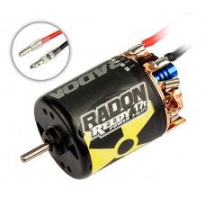 Associated Electrics Reedy Radon 17T 3600Kv Brushed