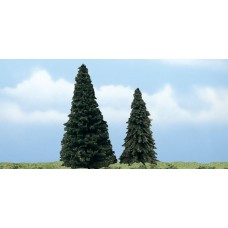 Premium Evergreen Trees (2)