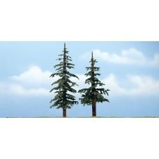 Premium Lodgepole Trees (2)
