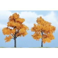 Premium Fall Maple Trees (2)