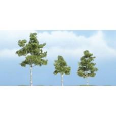 Premium Paper Birch Trees (3)