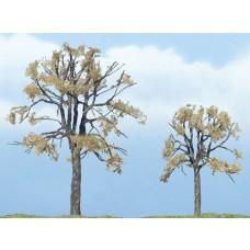 Premium Dead Elm Tree (2)