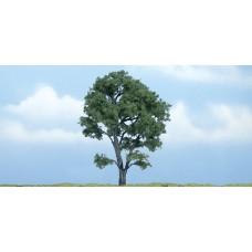 4 1/2 Premium Maple Tree (1)