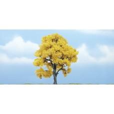 4 Premium Fall Beech Tree (1)