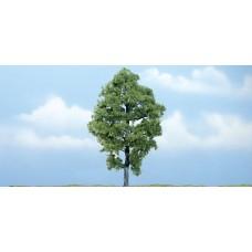 5 3/8 Premium Hickory Tree (1)