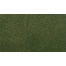 33x 50 Grass Mat Forest